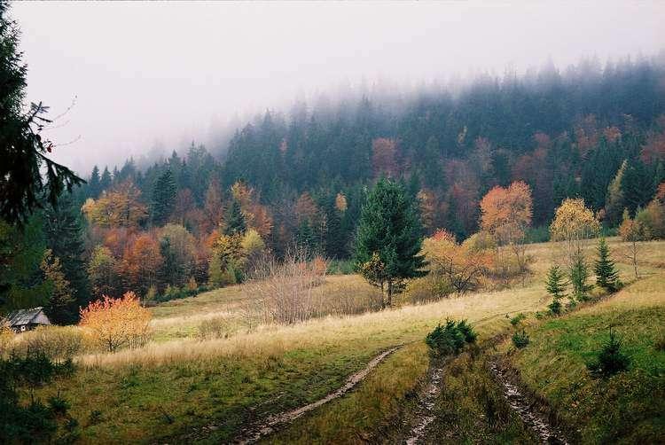 2004_10_24-01