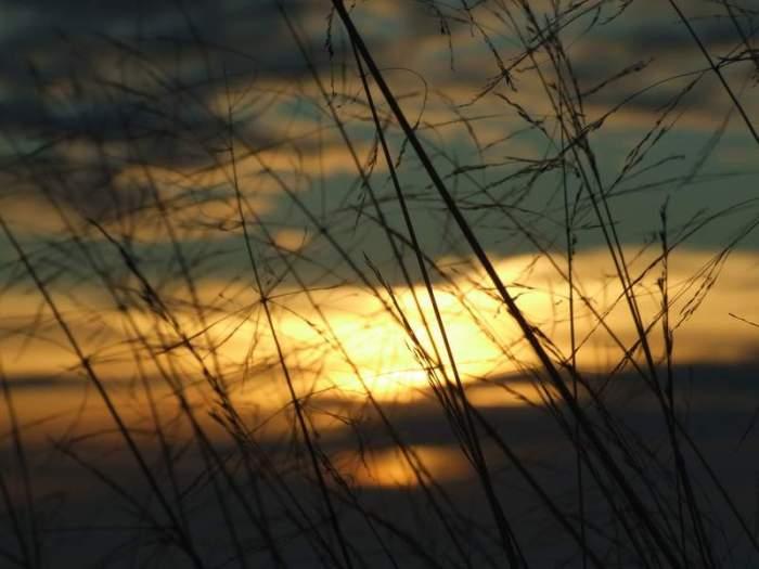 2006_10_21-09