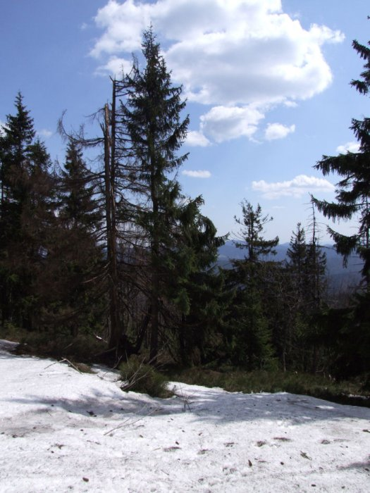 2008_04_27-13