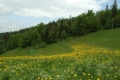 2008_05_28-02