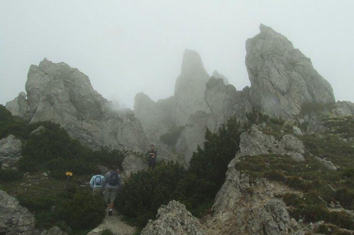 2008_06_15-00