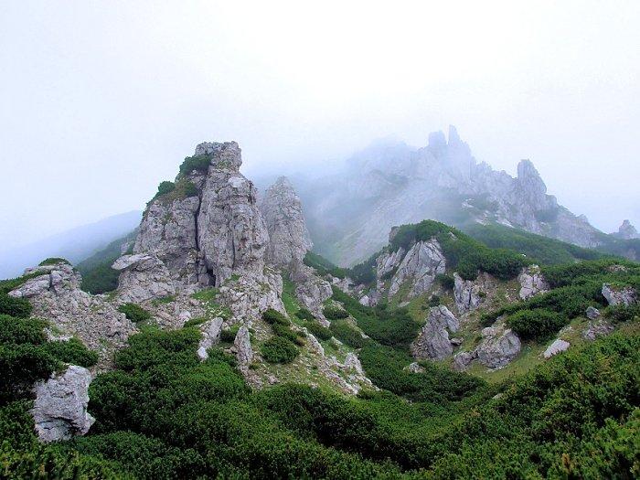 2008_06_15-11