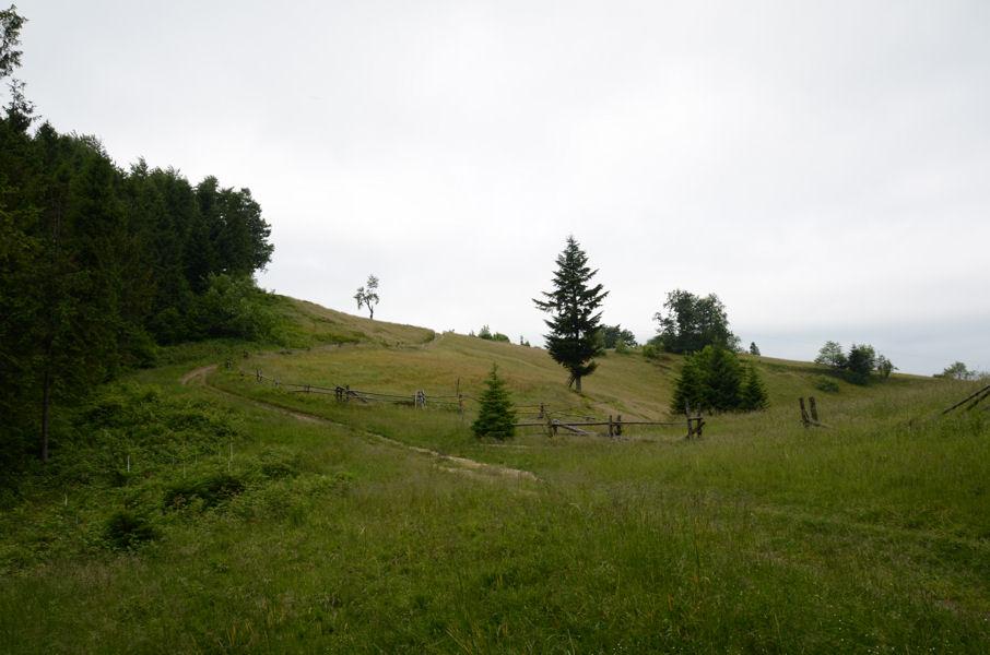 2011-06-23-03
