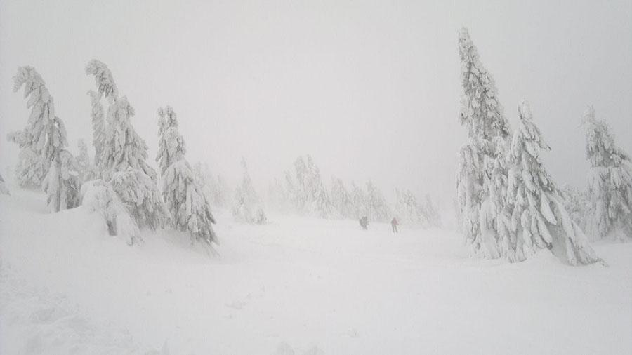 2012-01-14-12