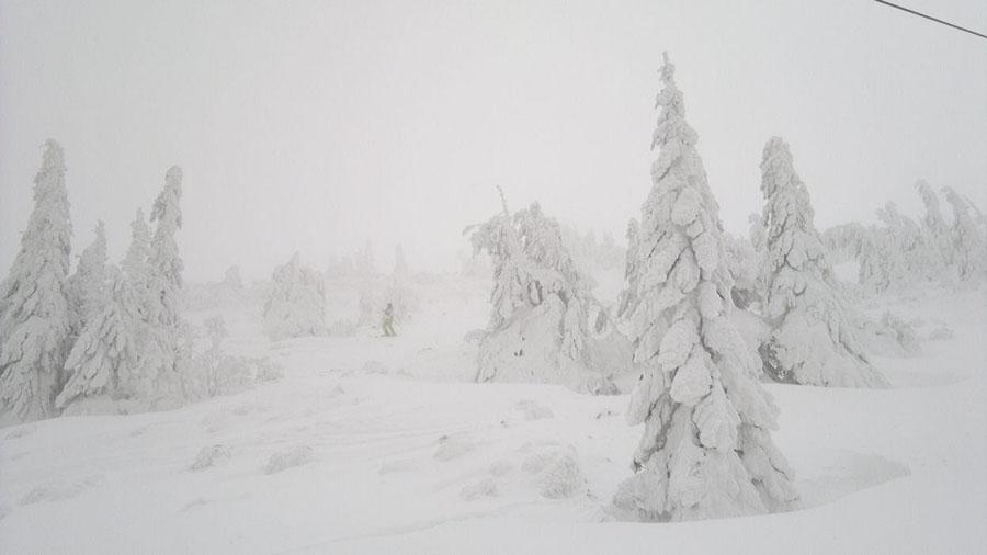 2012-01-14-13