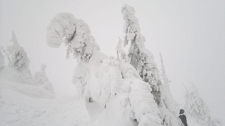 2012-01-14-15