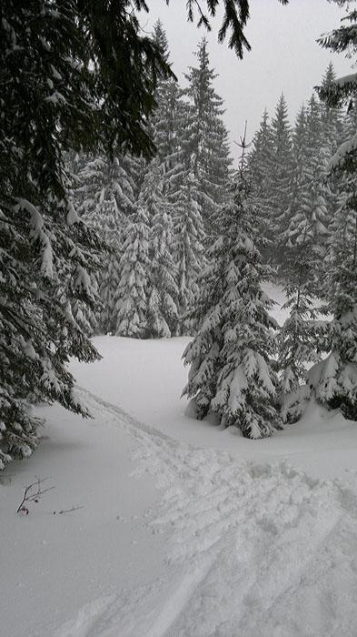 2012-01-14-18