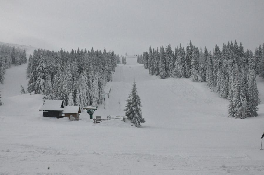 2012-02-17-19-31