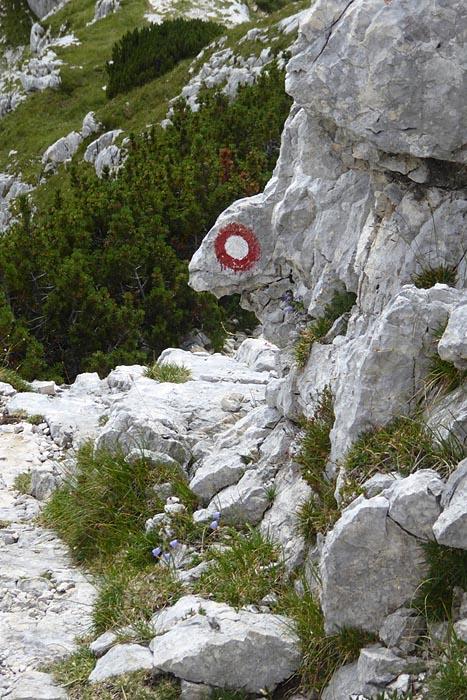 2016_08_12-16 Alpy Julijskie fot. ť. Tr©bacz (27)