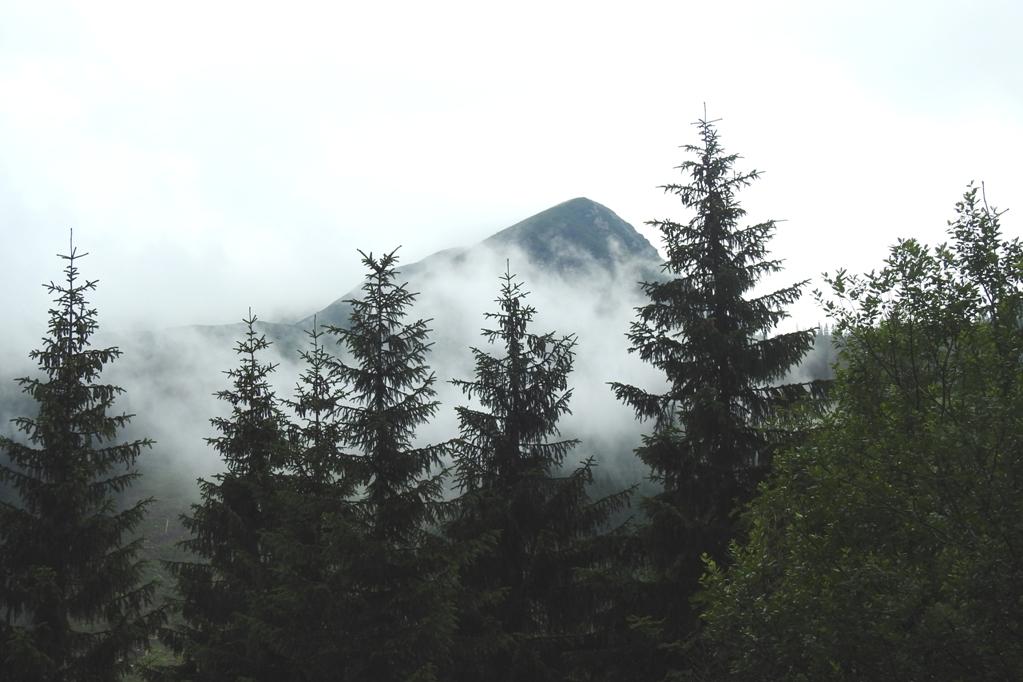 Rohacka Dolina fot. Łukasz Trębacz (104)